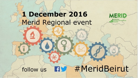 MERID regional event: towards enhancing framework conditions for cooperation between the European Union and the Middle East